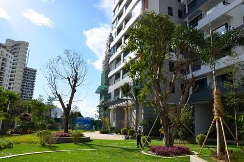 三亚鲁能三亚湾推出13套房源 单价约26146元/平