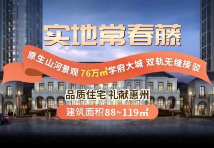 中国广东-实地常春藤